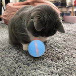 Smart-Ball - Interactive Pet Toy
