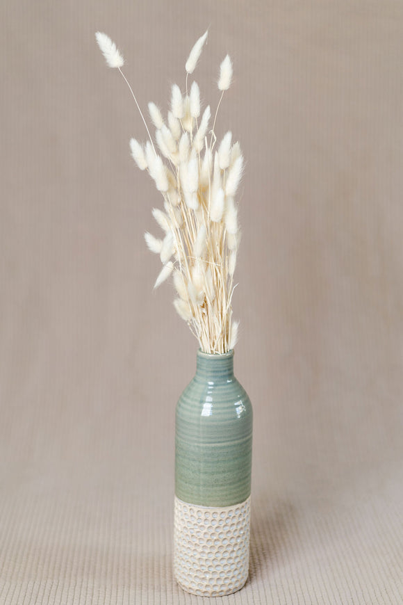 Bunny Tail Dried Natural Decor Grass