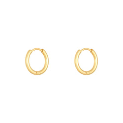 Small Golden Hoop Earrings