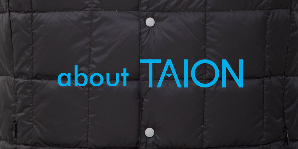 About TAION