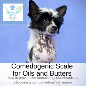 Comedogenic Scale for Oils and Butters