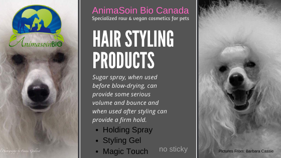 Hair Styling Collection (sugar cane, chamomile & vegetable proteins) - AnimaBio Care