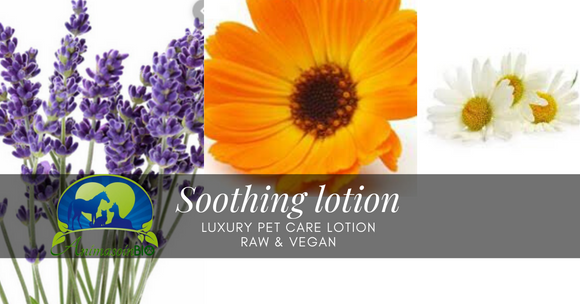 Soothing Lotion - Skin Care -  AnimaBio Care