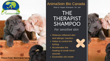 The Therapist Shampoo - First Aids - (Aloes Vera – Salicylic Acid & Essential oils ) -  AnimaBio Care