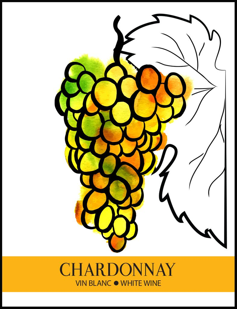 Chardonnay Wine Labels 30/pack