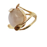Gastrodia - Moonstone Ring
