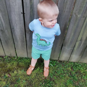 Dinosaur Boy Appliqué Shorts Set