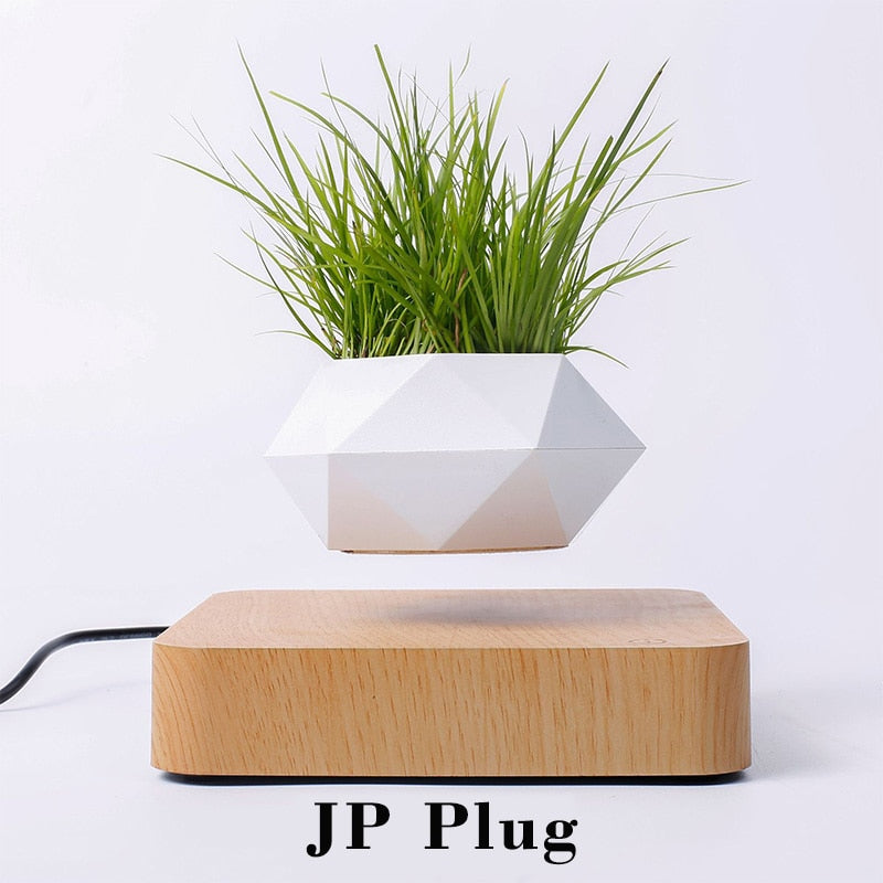 Levitating Flower Pot