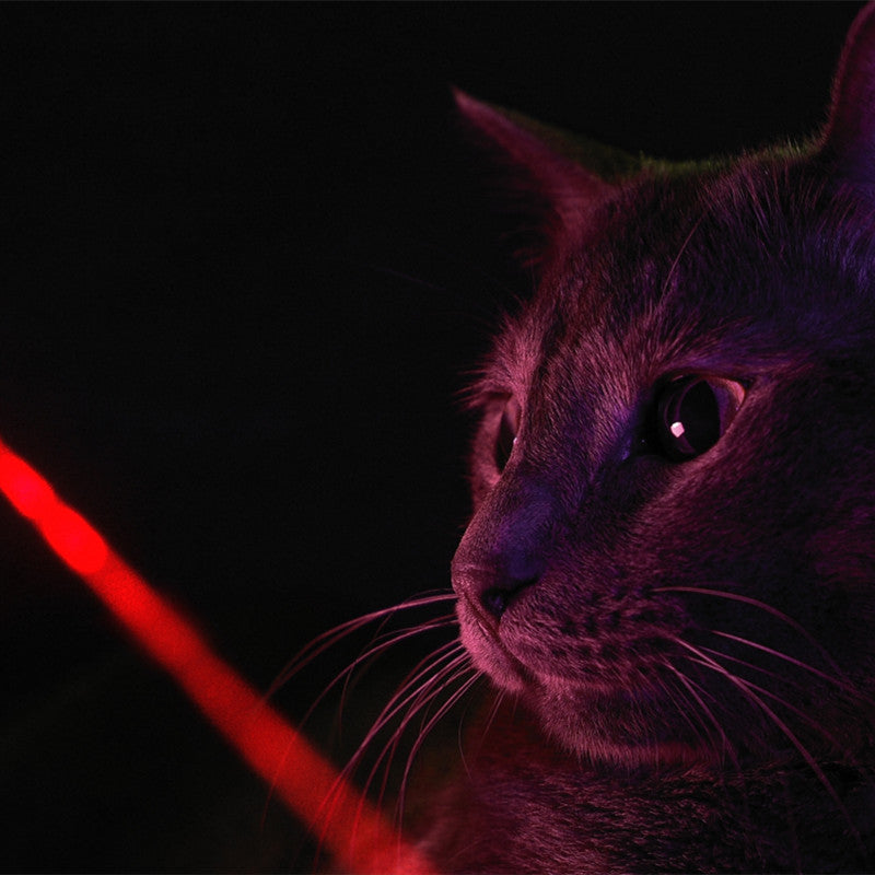 Smart Interactive Laser Cat Toy