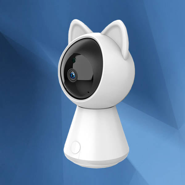 camera de surveillance interieur chat