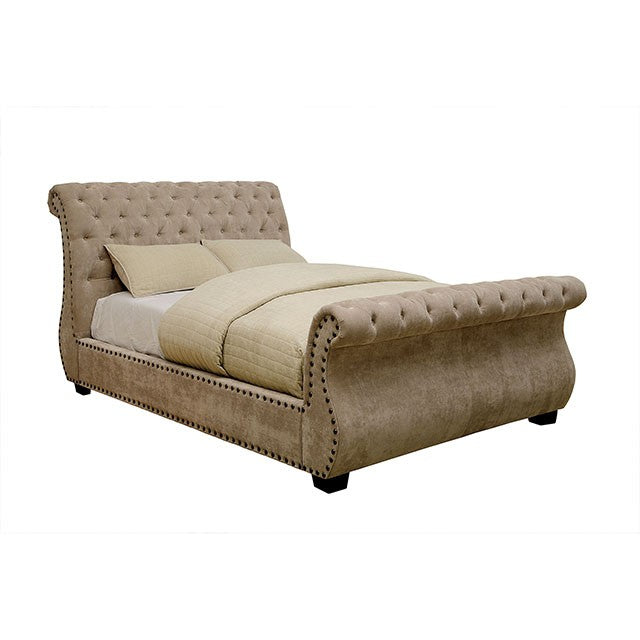 Noemi CM7127 Bed By Furniture Of AmericaBy sofafair.com