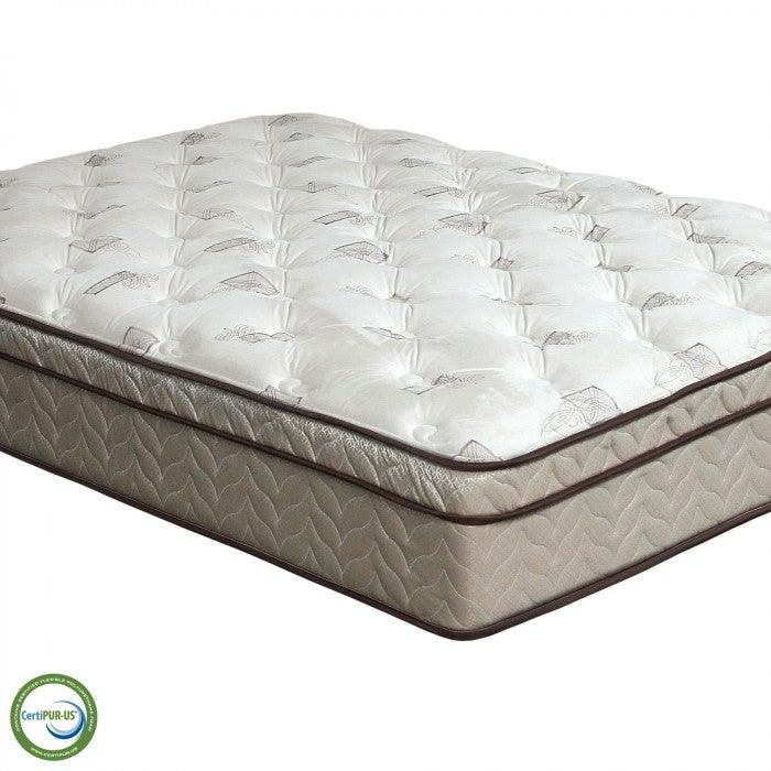 Lilium DM318 Euro Pillow Top Mattress By Furniture Of AmericaBy sofafair.com