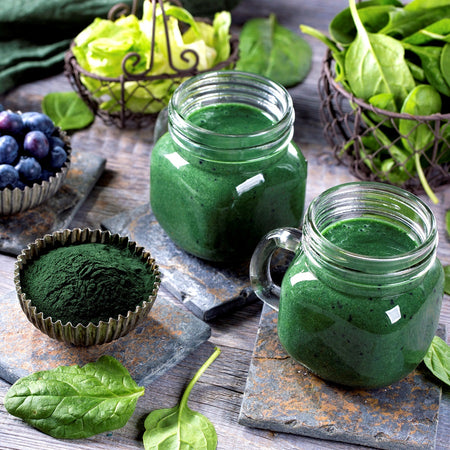 Know your algae: Everything you need to know about Chlorella and Spirulina