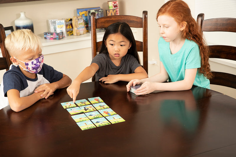 CuBirds: Card Game for Ages 8 and Up