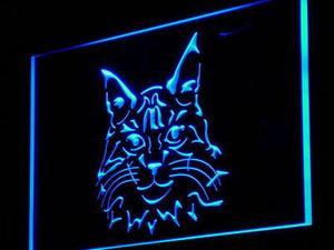 Maine Coon Cat Pet Shop Neon Sign (Kitty Display Decor Light)