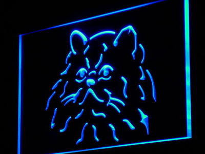 Himalayan Cat Pet Shop Neon Sign (Lover Light Kitty)