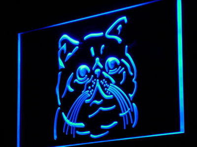 Exotic Shorthair Cat Breed Neon Sign (Pet Shop Light)