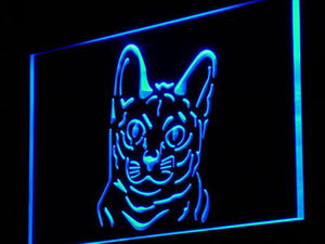 Cat Pet Shop Neon Sign (Cute Collection Korat Light)