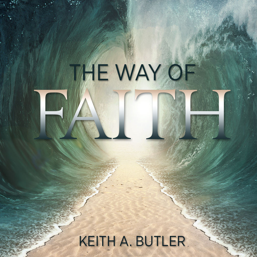 The Way of Faith - Book