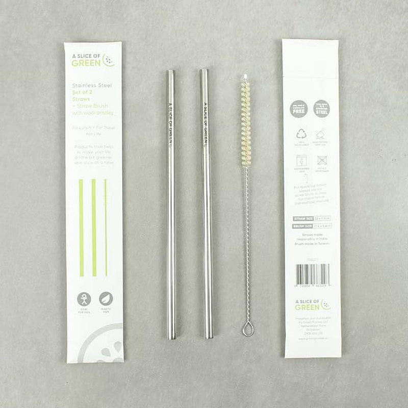 Set of Two Stainless Steel Straws & Cleaning Brush