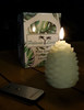 Combo Set of Two Pine Cone Candles