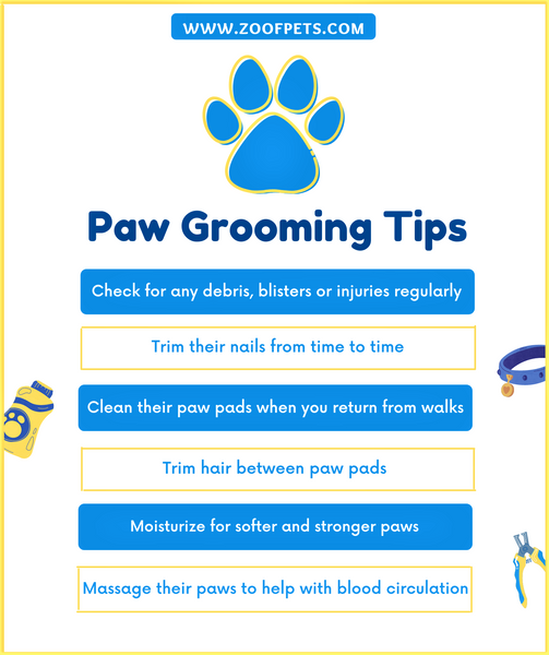 Dog Paw Grooming Tips