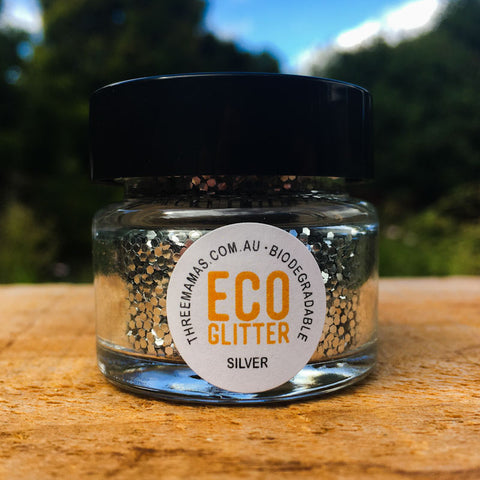 Silver Chunky Eco Glitter Jar Large