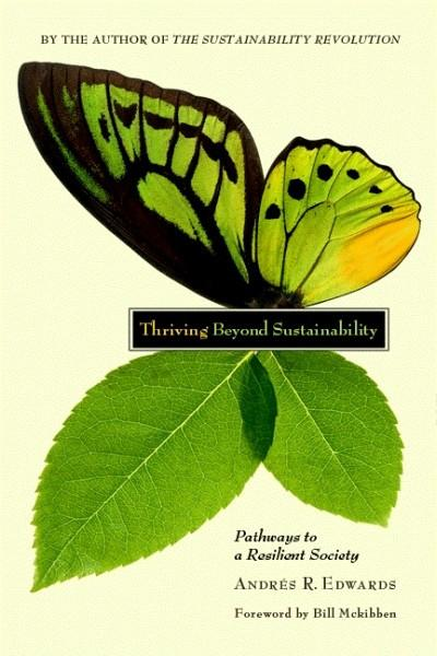 Thriving Beyond Sustainability (EPUB)