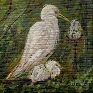 "Snowy Egret, 5"" x 5"", acrylic on canvas"