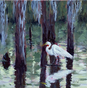 "Great Egret at Pine Island Rookery, 12"" x12"", acrylic on canvas"