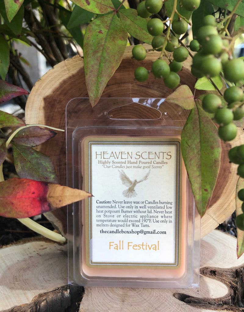 Wax Melts- Fall Festival Scent