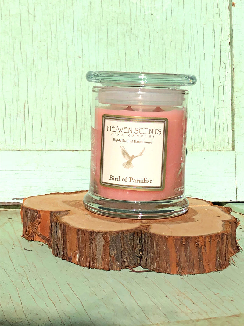 10 oz Candle- Birds of Paradise Scent