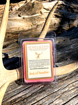 Wax Melts- Bird of Paradise Scent