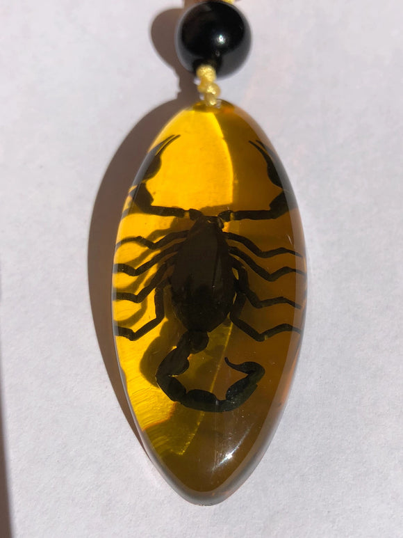 Real Black Scorpion in Amber Look Necklace long