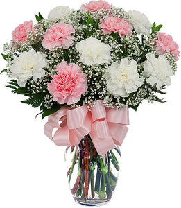Charming Carnation - Online Flowers Delivery In Delhi