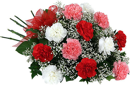Carnation Trio Bouquet - Send Flowers Online