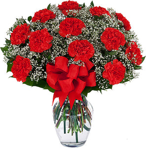 One Dozen Red Carnations - Send Flowers Online