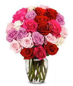 Exotica - Send Flowers Online