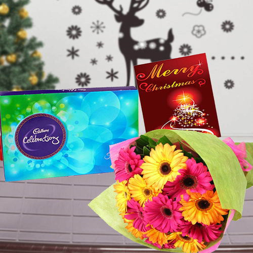 MIX GERBERAS BOUQUET WITH CADBURY CELEBRATIONS CHOCOLATE
