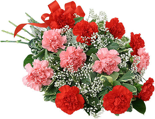 Pink & Red Carnation Bouquet