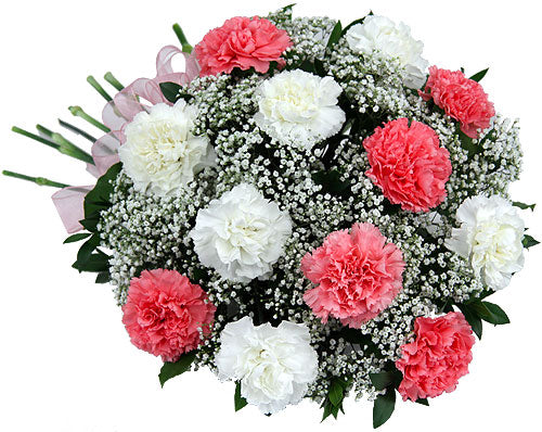 Pink & White Carnations - Send Flowers Online