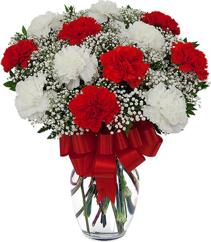 Perfect Carnation - Send Flowers Online