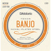 D'Addario EJ63 Tenor Banjo Nickel 9-30