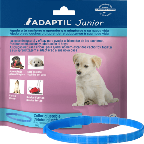 ADAPTIL JUNIOR COLEIRA