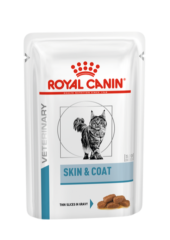 Royal Canin Gato Skin and Coat Húmida 12x85 gr