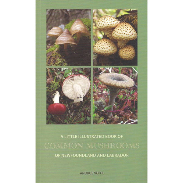 A Little Illustrated Book of Common Mushrooms of Newfoundland and Labrador - Andrus Voitk