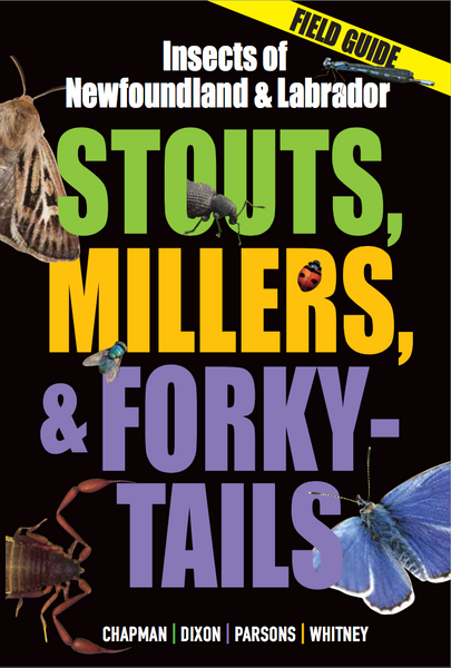 Stouts, Millers, and Forky-Tails: Insects of Newfoundland and Labrador