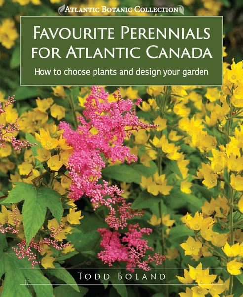 FAVOURITE PERENNIALS FOR ATLANTIC CANADA: HOW TO CHOOSE, DESIGN, AND PLANT