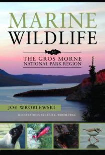 Marine Wildlife of the Gros Morne National Park Region