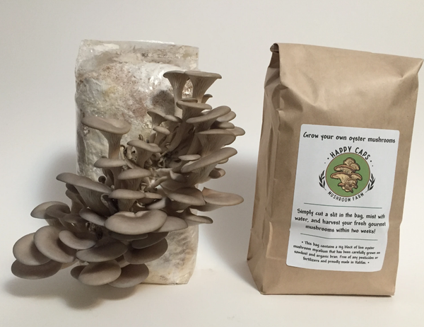 Happy Caps Grow Your Own Mushroom Kit
